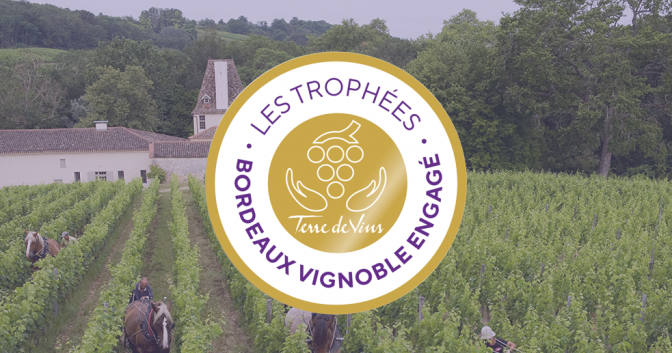 Vignobles Turtaut nominé Nature et Respect